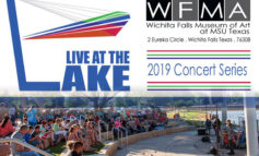 Live at The Lake 2019 Concert Series